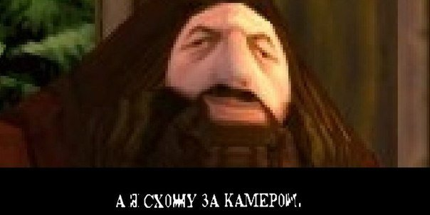 https://cs4.pikabu.ru/images/big_size_comm/2014-02_6/13933923677085.jpg