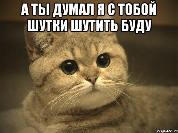 14056843144572.jpeg