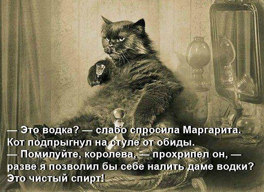 https://cs4.pikabu.ru/images/big_size_comm/2014-08_2/14074760663311.jpg