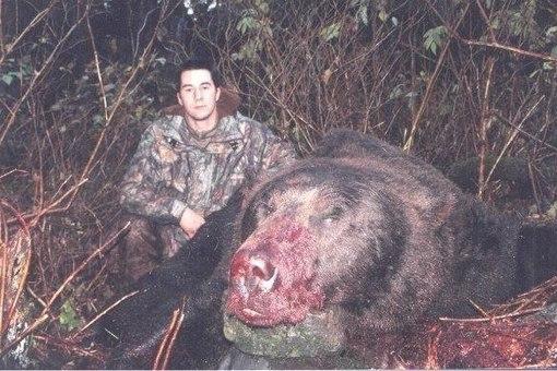 рост самого большого медведя