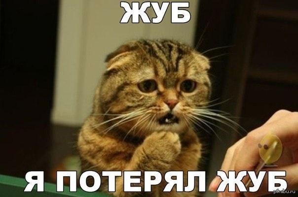 14223900808910.jpg