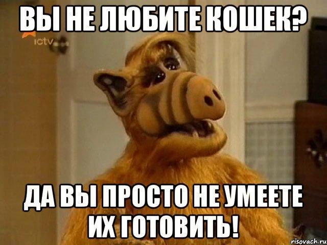 https://cs4.pikabu.ru/images/big_size_comm/2016-05_5/1463928145175496179.jpg
