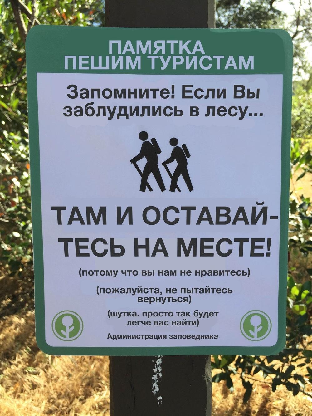Если вы заблудились в лесу