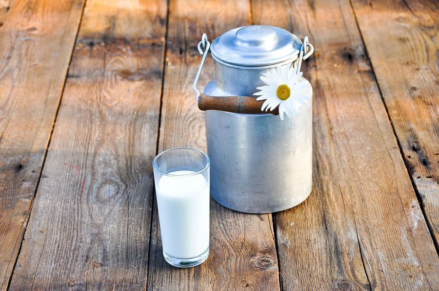 Молоко и бидон или когда корова не в себе. ID42