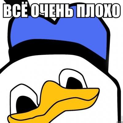 13924970495912.jpg