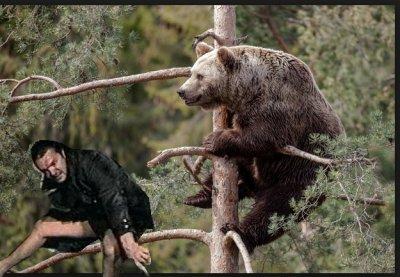 Мужик медведь ебет мужика медведя