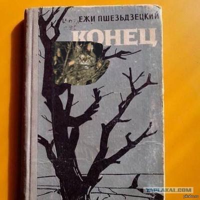 https://cs4.pikabu.ru/images/previews_comm/2014-10_3/14133161472178.png