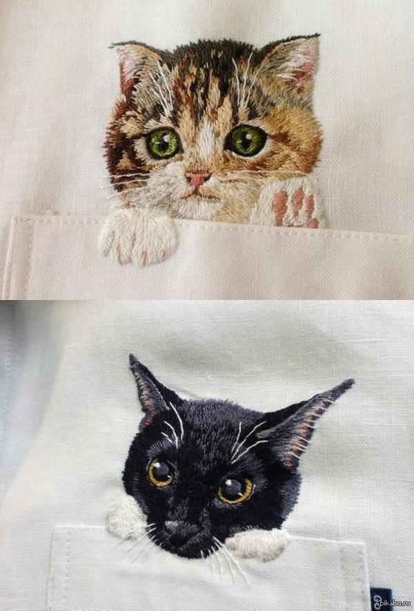Вы бы хотели иметь таких милых котиков, выглядывающих из кармашка? [пусть даже вы брутальный волосатый слесарь-сантехник]