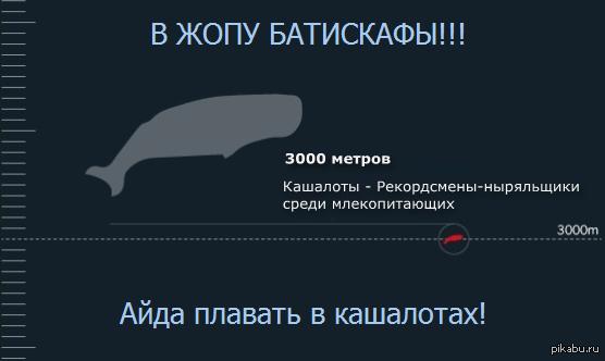 "Кашалоты удивляют эта тема <a href=""http://pikabu.ru/story/gde_mn370_2139691"">http://pikabu.ru/story/_2139691</a> намекнула"
