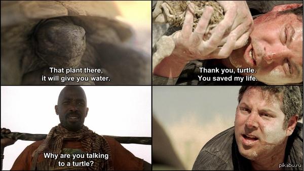 Matt is goin' insane! -это растение, оно даст тебе воду. -спасибо, черепаха. Ты спасла мне жизнь. -почему ты разговариваешь с черепахой? -...