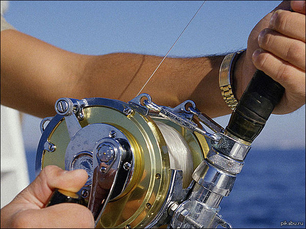 Лига рыбаков (Лига любителей рыбной ловли) любите ловить рыбку? Отзовитесь!  Напишите город откуда вы )  (Давайте продвинем в горячее, посмотрим за одно на сколько большая лига)