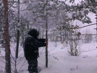 Зима, уходиииии