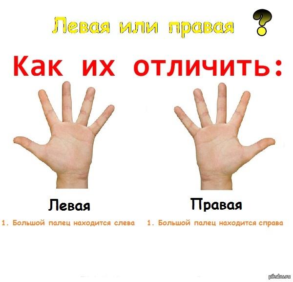 Лево-право путать