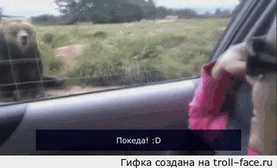Вежливый Мишка =)