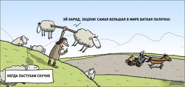 Когда пастухам скучно...
