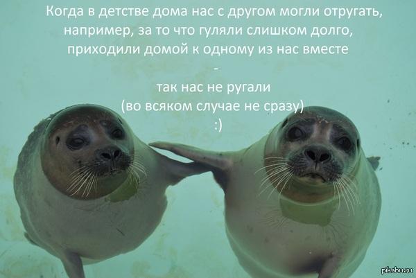 "Лайфхак В ответ на <a href=""http://pikabu.ru/story/kak_vspomnyu_azh_ne_po_sebe_2386316"">http://pikabu.ru/story/_2386316</a>    Криво налепил надпись в paint специально для пикабу"