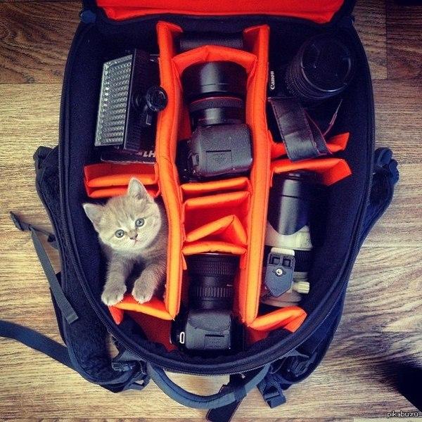 Собираюсь идти на съемки, уложил рюкзак как надо :) К работе готов!