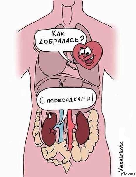 С пересадками