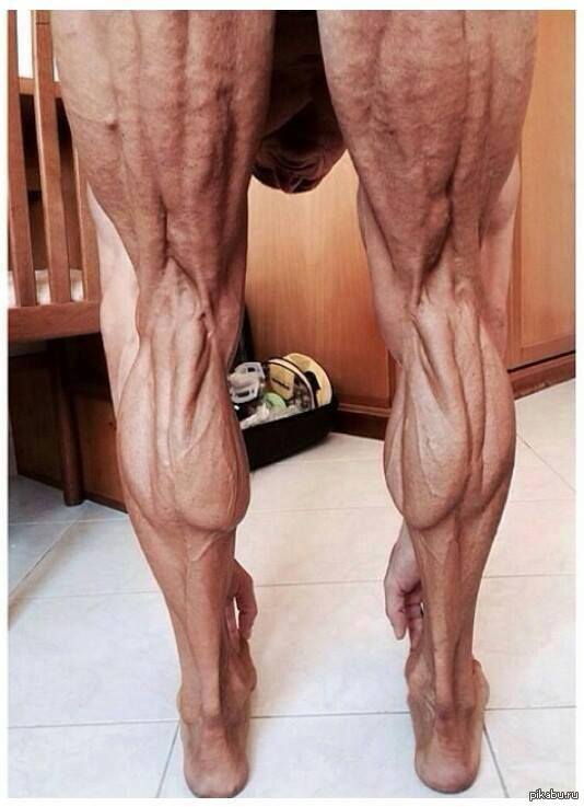 Как выглядят красивые, стройные ноги, без капельки жира.