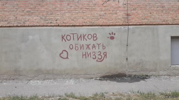Не.. Ну в самом-то деле)))
