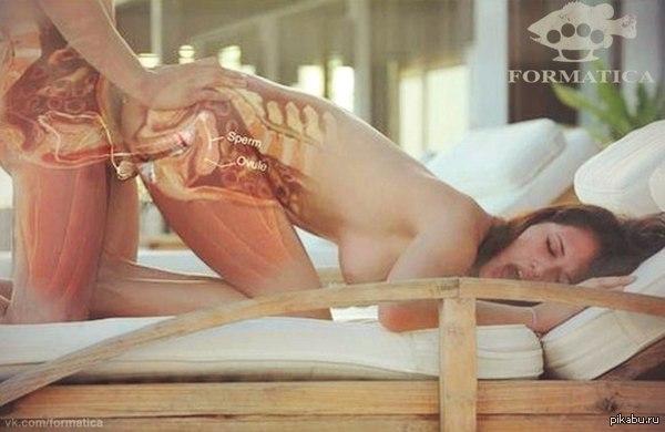 Порно фото вконтакте половой акт порно группа поддержки