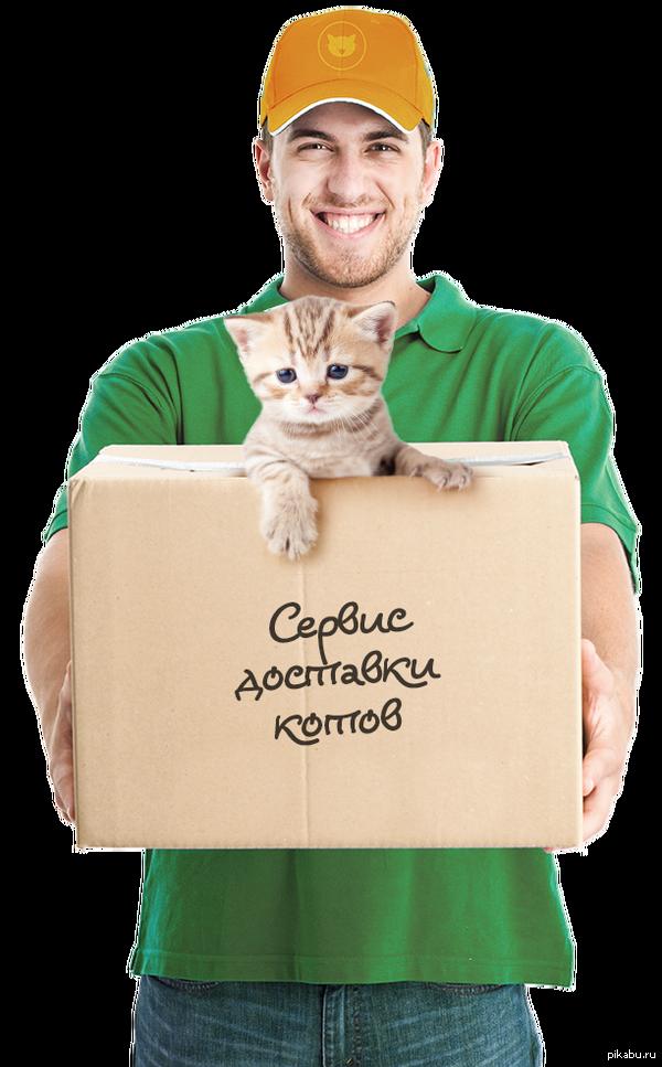 Сервис доставки котов http://kotoservice.ru/  Что еще нужно рядовому пикабушнику?   Надеюсь это не подстава с ипотекой :D