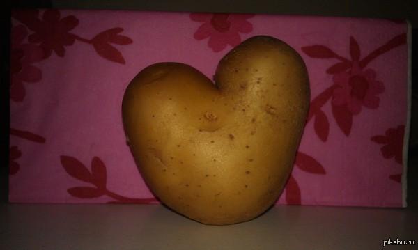 Картофельное сердце Из Тамбова с любовью!