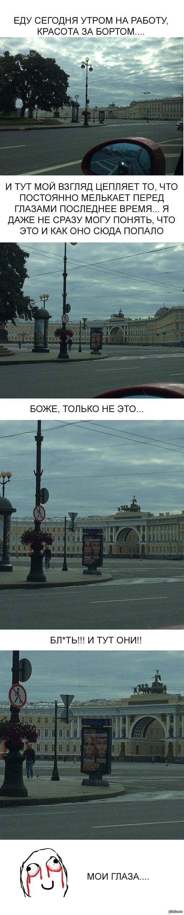 Когнитивный диссонанс с приветом из Петербурга -)