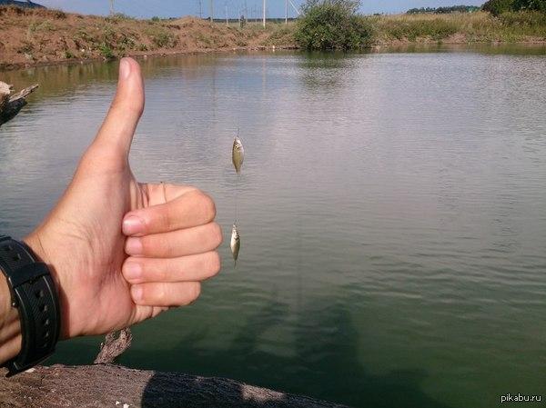 Рыбалка удалась Всего поймал 5 штук таких вот рыбных личинок