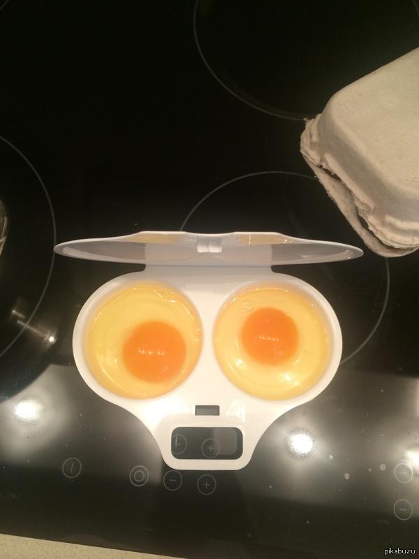 Завтрак в ужасе Кто употротый? Я не упоротый!