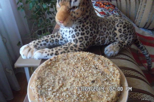 Всех у кого сегодня тоже ДР, от души желаю только добра и тортиков!!1 Первый рас испёк торт, плюшевый леопард вроде одобряет.  С днем рождения МЕНЯ, и ВСЕХ!!!!