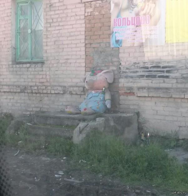 Замуровали демоны! Сидит на одном крыльце Новосибирска, у замурованной двери