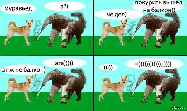 Упрлс О)