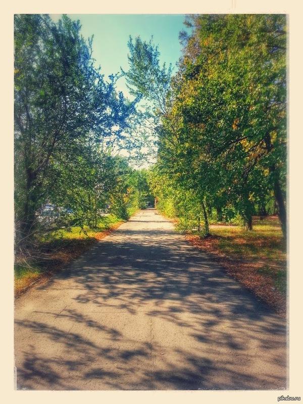 Одна из дорог на мою работу обработка фото от гугла