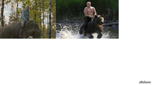 """Будущее Смотрел тут фильм,""""Столетний старик,который вылез в окно и исчез"""" на этом моменте вспомнился старый прикол с Путиным  З.Ы. всем советую посмотреть :"""