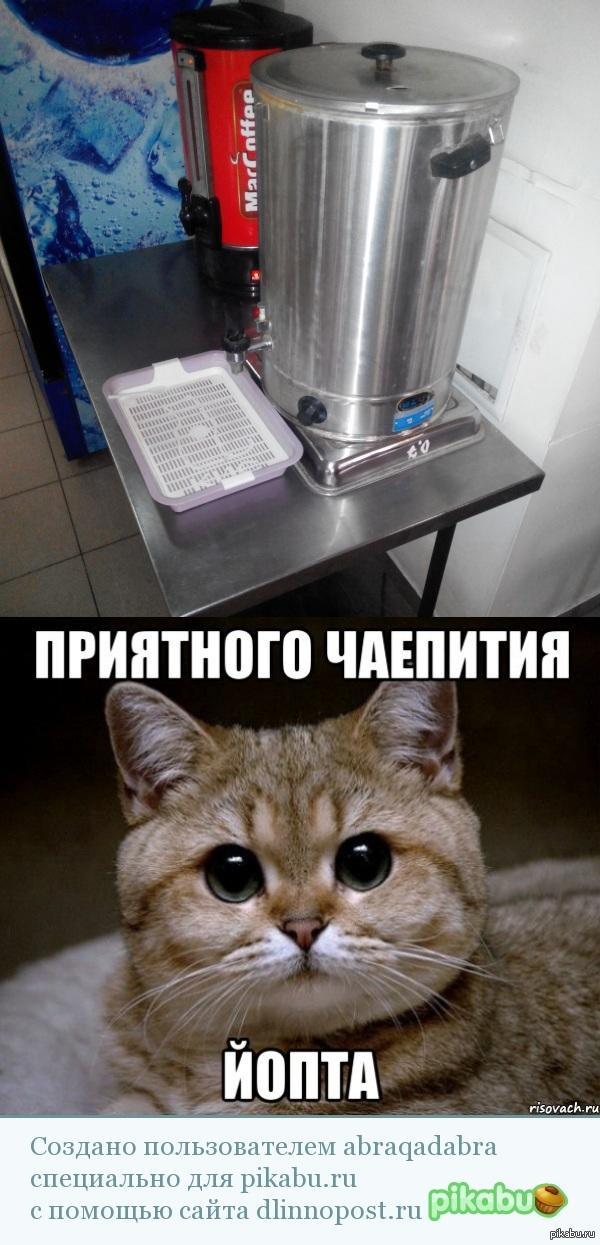 Приятного чаепития Сфоткал сегодня. Столовка. Казань.