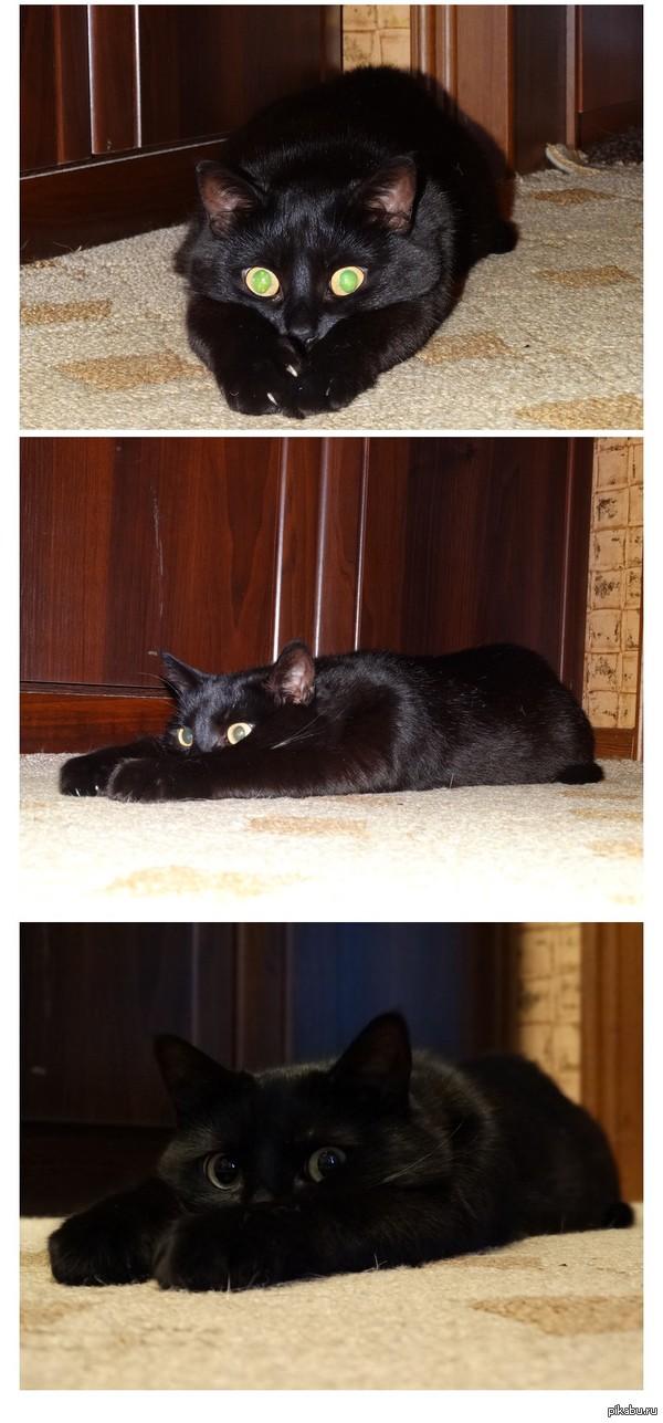 Кошачья грусть-тоска... Лежал так минут 30...о чем то думал...