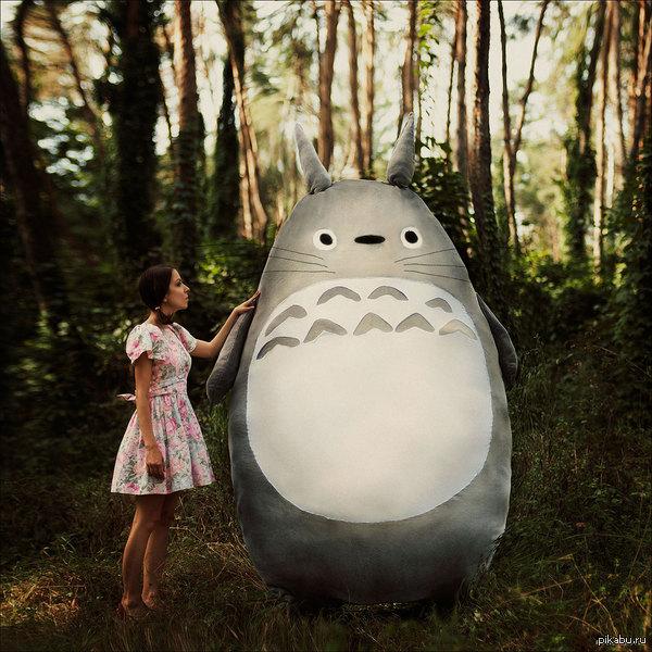 "Totoro ^_______^ Фотография по мотивам аниме ""Мой сосед Тоторо"" :-)"