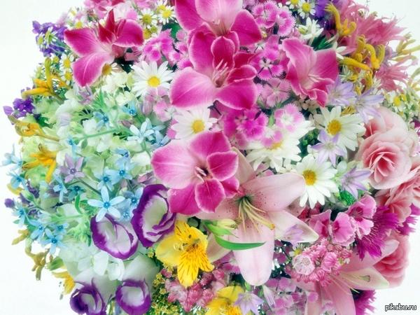 Сегодня Международный день Любви к Родителям!!!! Не забудь поздравить папу и маму)))) Они ведь самое дорогое что у нас есть.