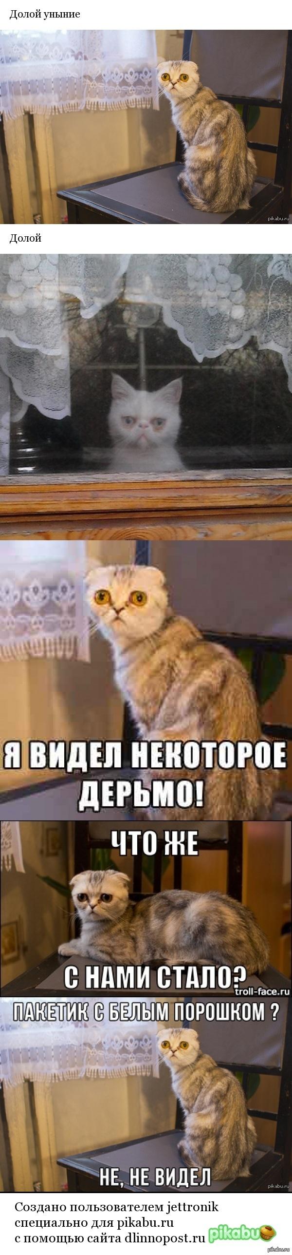 "Долой уныние взял с поста: <a href=""http://pikabu.ru/story/yeto_voobshche_normalno_chto_on_takoy_2719844"">http://pikabu.ru/story/_2719844</a>"