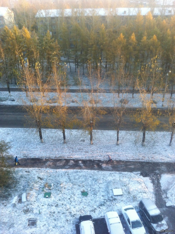 Снееееееег!!! А у нас в Барнауле выпал снег)