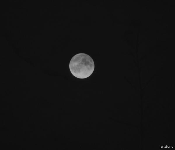 Я знаю, что для профи - это фигня, но для меня - это маленькая радость Наконец-то удалось заснять луну. Очень счастлива))) Просто хочу с вами поделиться.   В комменте еще одна