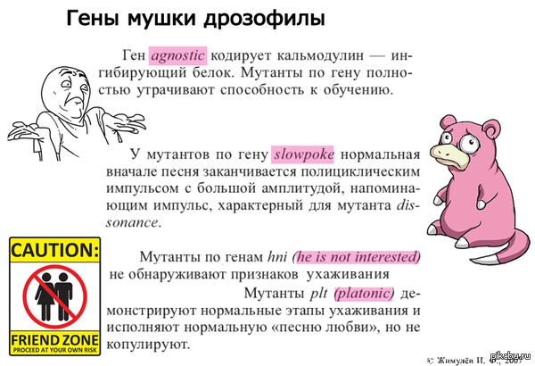 """Совсем немного научного юмора Цитируется учебник """"Общая и молекулярная генетика"""""""