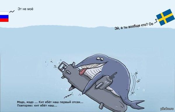 О приключениях подводников