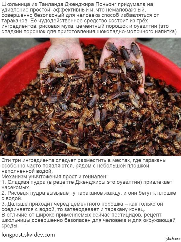 Русское анальное порно смотреть онлайн бесплатно фото