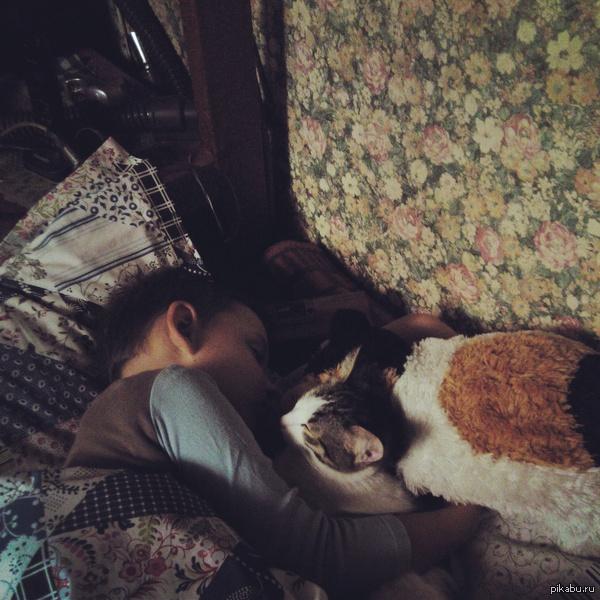 Пришел домой,а тут такое..) Кот с братом никогда не ладили(он постоянно его мучил,а мохнатый всегда от него прятался),видать кот сдался=)