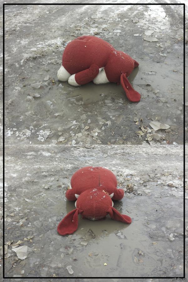 Уронили зайку на пол... Возвращаясь домой к хозяйке, не смог обойти лужу.