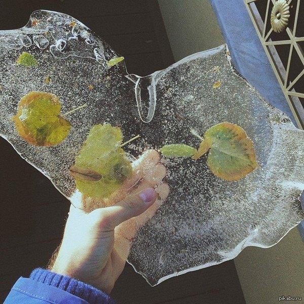 Вот такое ледяное сердце нашел сегодня на террасе.