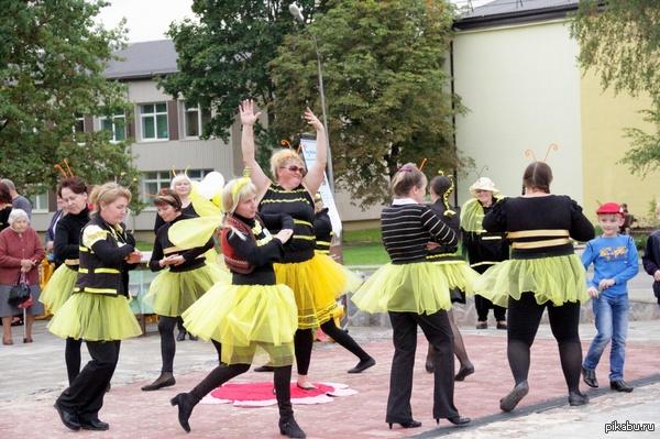 Я пчелка , пчелка, пчелка - я вовсе не Медведь. Пчелиная матка и ее великолепные трудяги. Фото с праздника в маленьком латвийском городке.