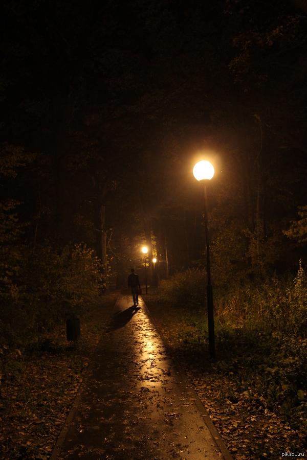 Осенняя дорога домой